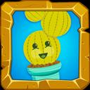 Adorable Cactus